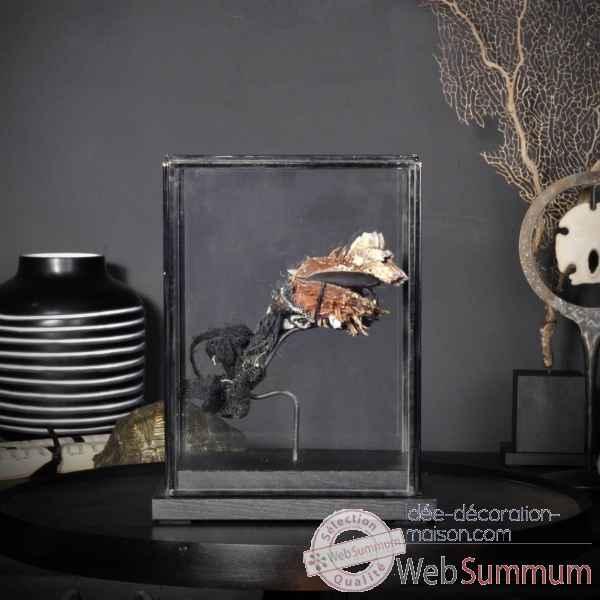 Achat de aquarium sur id e d coration maison for Achat deco aquarium