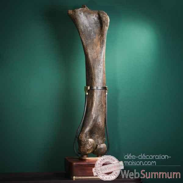 Femur fossilise de mammouth avec traces objet de curiosite pufo308