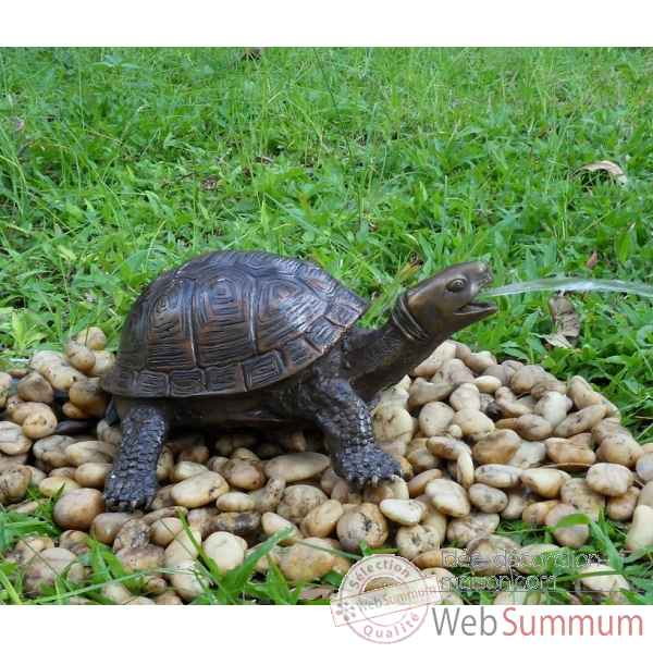 Achat de tortues sur id e d coration maison for Tortue decoration